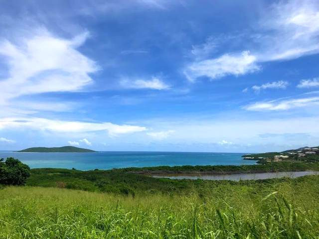 108 Green Cay Ea, St. Croix, VI 00820 (MLS #19-1553) :: The Boulger Team @ Calabash Real Estate