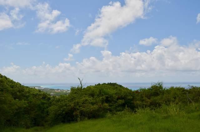 232 Little La Grange We, St. Croix, VI 00840 (MLS #19-1556) :: Coldwell Banker Stout Realty