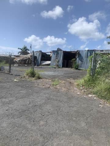 3 Carlton We, St. Croix, VI 00840 (MLS #19-1574) :: Hanley Team | Farchette & Hanley Real Estate