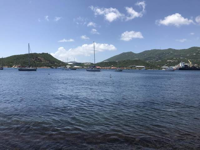 83SB Water Island Ss, St. Thomas, VI 00802 (MLS #19-1585) :: Coldwell Banker Stout Realty