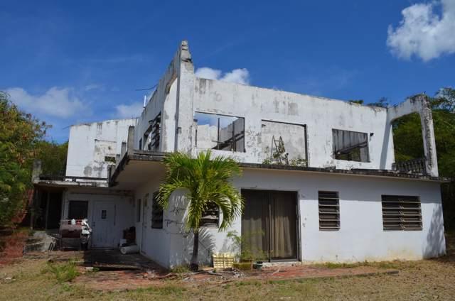 88U La Grande Prince Qu, St. Croix, VI 00820 (MLS #19-1593) :: Hanley Team | Farchette & Hanley Real Estate