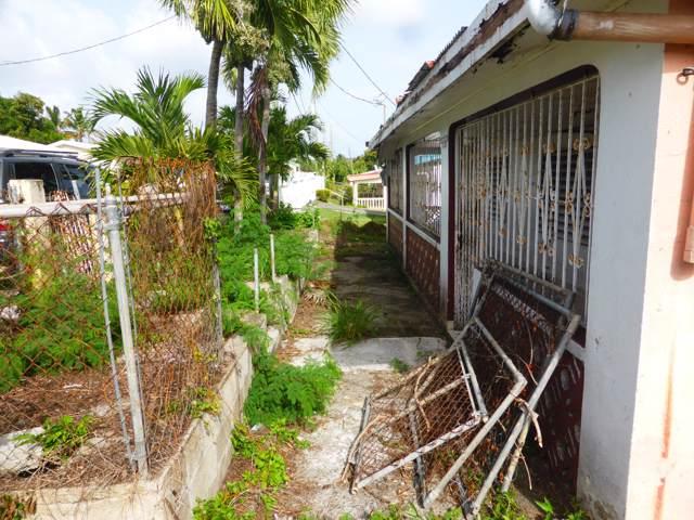 157 Mon Bijou Ki, St. Croix, VI 00820 (MLS #19-1599) :: Hanley Team | Farchette & Hanley Real Estate