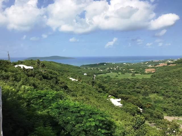 76 Solitude Eb, St. Croix, VI 00820 (MLS #19-1600) :: Hanley Team | Farchette & Hanley Real Estate