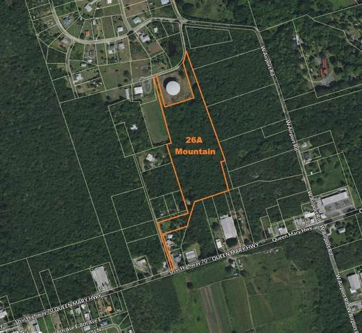 Rem 26A E Mountain Pr, St. Croix, VI 00840 (MLS #19-1607) :: Hanley Team | Farchette & Hanley Real Estate