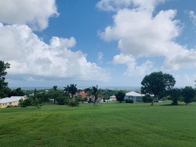 329 Mary's Fancy Qu, St. Croix, VI 00820 (MLS #19-1608) :: Coldwell Banker Stout Realty