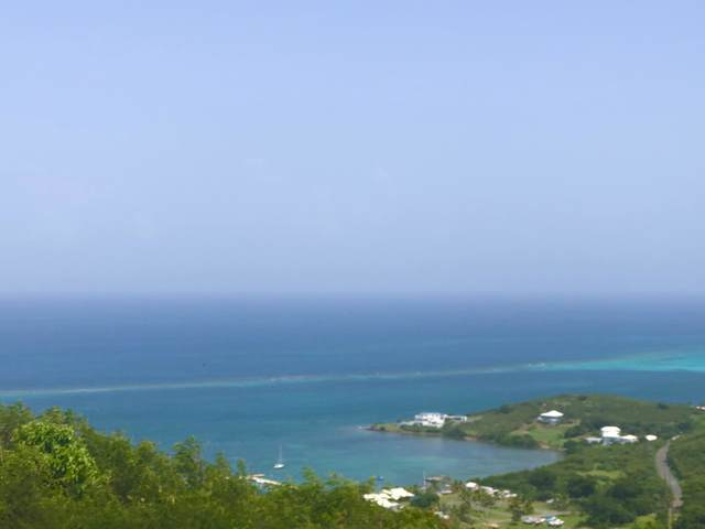 5B Teagues Bay Eb, St. Croix, VI 00820 (MLS #19-1615) :: Hanley Team | Farchette & Hanley Real Estate