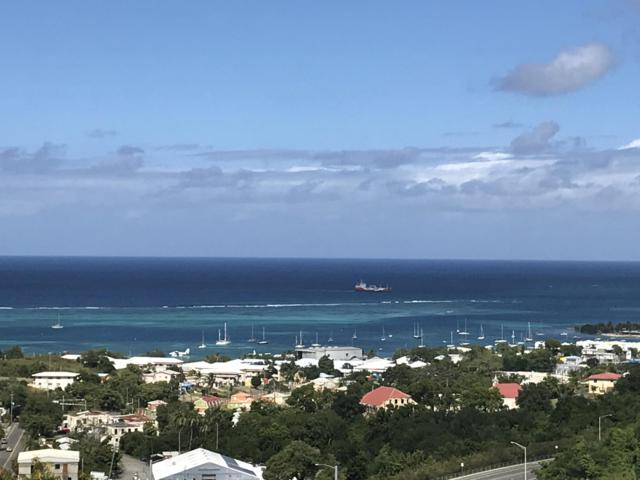 76 Hermon Hill Co, St. Croix, VI 00820 (MLS #19-162) :: The Boulger Team @ Calabash Real Estate