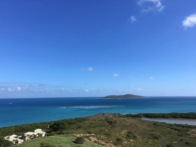 107 Green Cay Ea, St. Croix, VI 00820 (MLS #19-163) :: Hanley Team | Farchette & Hanley Real Estate