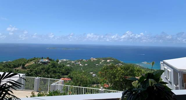 23 Frenchman Bay Fb, St. Thomas, VI 00802 (MLS #19-1640) :: Hanley Team | Farchette & Hanley Real Estate