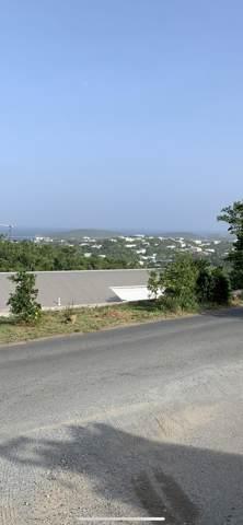 10-3 Frydenhoj Rh, St. Thomas, VI 00802 (MLS #19-1649) :: Hanley Team | Farchette & Hanley Real Estate
