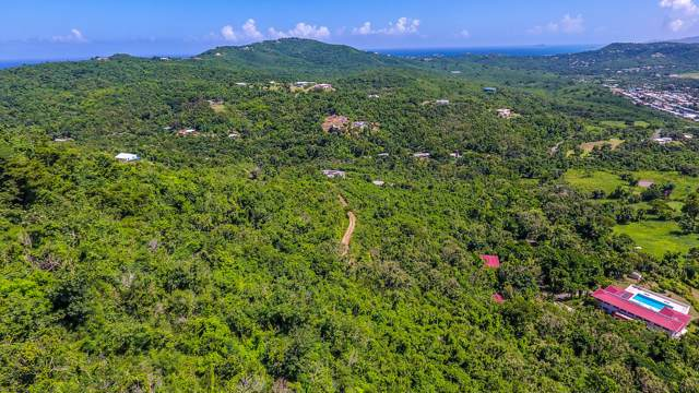 35 Little Fountain Ki, St. Croix, VI 00850 (MLS #19-1651) :: Hanley Team | Farchette & Hanley Real Estate