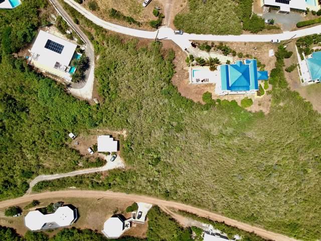 123 Catherine's Hope Eb, St. Croix, VI 00000 (MLS #19-1655) :: Hanley Team | Farchette & Hanley Real Estate