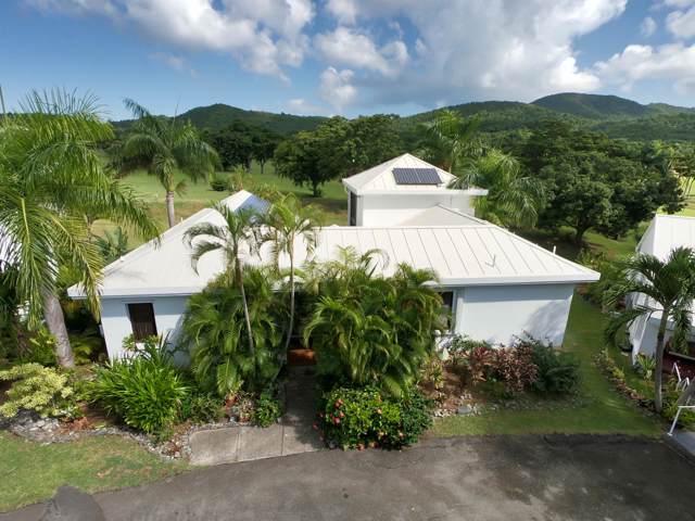40 River Pr, St. Croix, VI 00850 (MLS #19-1667) :: Hanley Team | Farchette & Hanley Real Estate