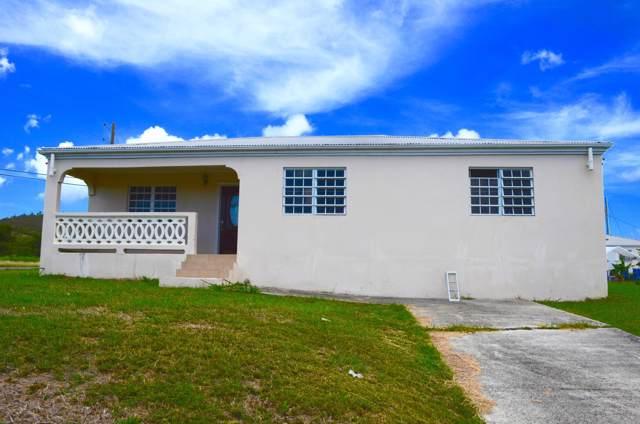 260 St. George Pr, St. Croix, VI 00840 (MLS #19-1675) :: Hanley Team | Farchette & Hanley Real Estate