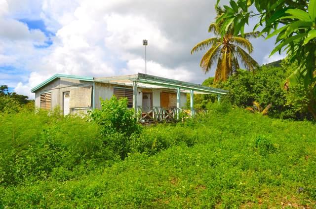 12-AG Colquohoun Ki, St. Croix, VI 00850 (MLS #19-1676) :: Hanley Team | Farchette & Hanley Real Estate
