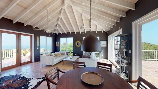 126 Cotton Valley Eb, St. Croix, VI 00820 (MLS #19-1677) :: Hanley Team | Farchette & Hanley Real Estate