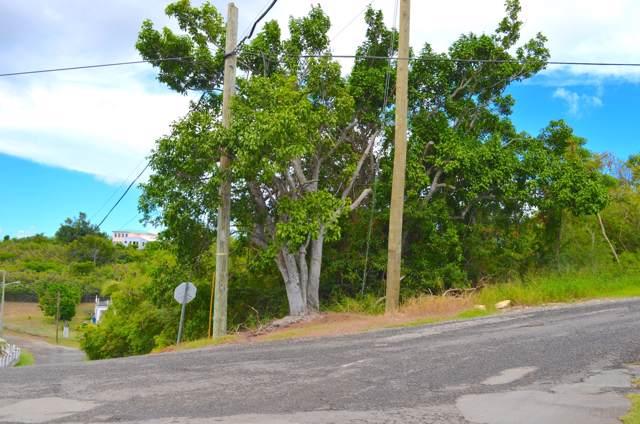 19 La Reine Ki, St. Croix, VI 00820 (MLS #19-1680) :: Hanley Team | Farchette & Hanley Real Estate