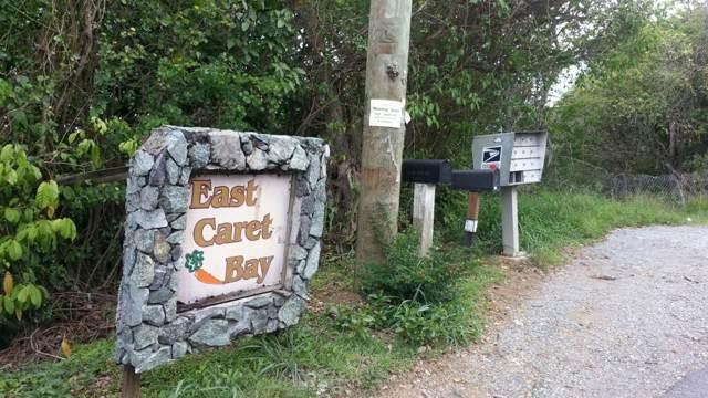 2E-51-26 Caret Bay Lns, St. Thomas, VI 00802 (MLS #19-1714) :: Coldwell Banker Stout Realty
