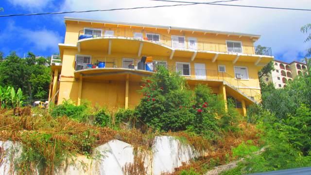 11 3 G Contant Ss, St. Thomas, VI 00802 (MLS #19-1715) :: Hanley Team | Farchette & Hanley Real Estate