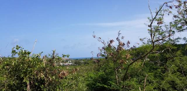 139 V.I. Corp Lands Pr, St. Croix, VI 00820 (MLS #19-1726) :: Hanley Team | Farchette & Hanley Real Estate