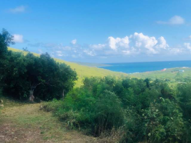 83 Solitude Eb, St. Croix, VI 00820 (MLS #19-1729) :: Hanley Team | Farchette & Hanley Real Estate