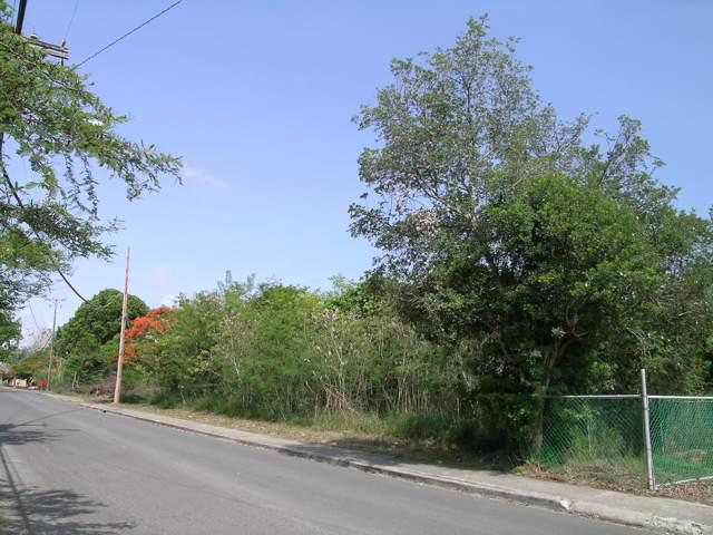 Rem 47 Stoney Ground We, St. Croix, VI 00820 (MLS #19-1730) :: Hanley Team   Farchette & Hanley Real Estate