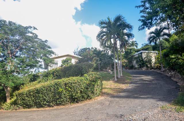 2C Little Princesse Co, St. Croix, VI 00820 (MLS #19-1731) :: Hanley Team | Farchette & Hanley Real Estate
