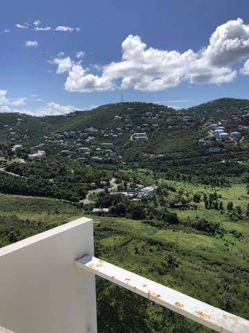 U Lovenlund Gns, St. Thomas, VI 00802 (MLS #19-1750) :: Hanley Team | Farchette & Hanley Real Estate