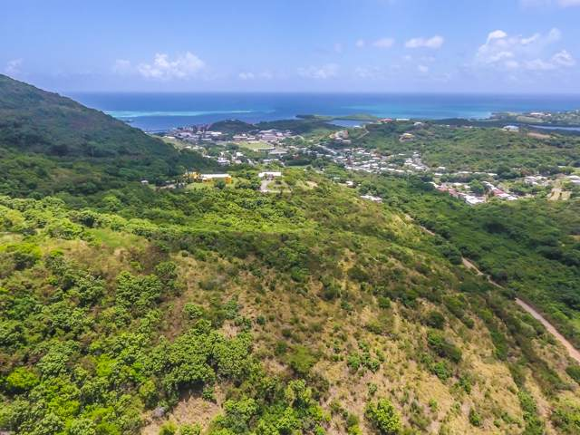 REM 67 Mt. Welcome Ea, St. Croix, VI 00820 (MLS #19-1751) :: Hanley Team | Farchette & Hanley Real Estate