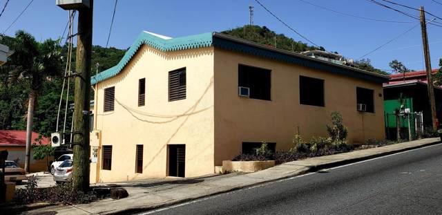 73A Dronningens Gade Ki, St. Thomas, VI 00802 (MLS #19-1758) :: Hanley Team | Farchette & Hanley Real Estate