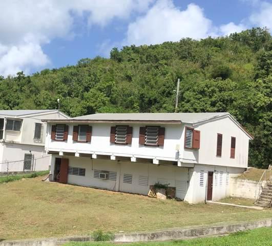 24 Eliza's Retreat Ea, St. Croix, VI 00820 (MLS #19-1763) :: Hanley Team | Farchette & Hanley Real Estate