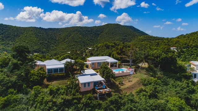 12 Betsy's Jewel Nb, St. Croix, VI 00820 (MLS #19-1773) :: Coldwell Banker Stout Realty