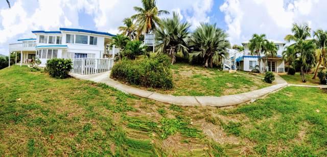 3-D & 3-E St. John Qu, St. Croix, VI 00820 (MLS #19-1774) :: Hanley Team | Farchette & Hanley Real Estate
