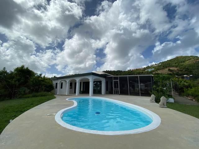 71 Concordia Nb, St. Croix, VI 00850 (MLS #19-1775) :: Hanley Team | Farchette & Hanley Real Estate