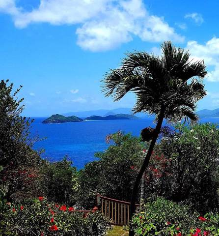 D9 Smith Bay Ee, St. Thomas, VI 00802 (MLS #19-1778) :: Coldwell Banker Stout Realty