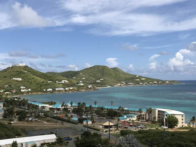 60 Turner's Hole Eb, St. Croix, VI 00820 (MLS #19-1789) :: Coldwell Banker Stout Realty