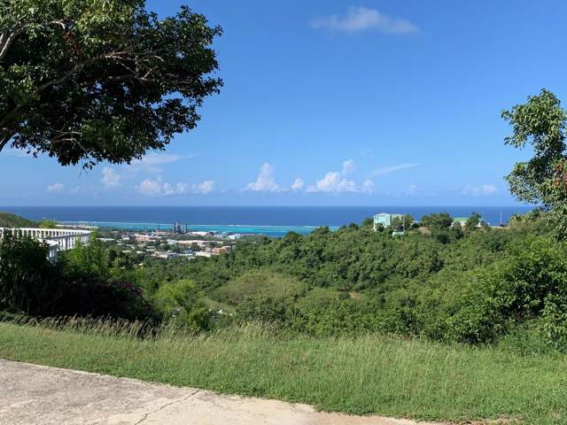 22 Hermon Hill Co, St. Croix, VI 00820 (MLS #19-1790) :: Coldwell Banker Stout Realty