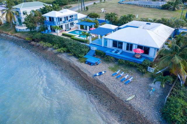 19 & 20 Cotton Valley Eb, St. Croix, VI 00820 (MLS #19-1806) :: Coldwell Banker Stout Realty