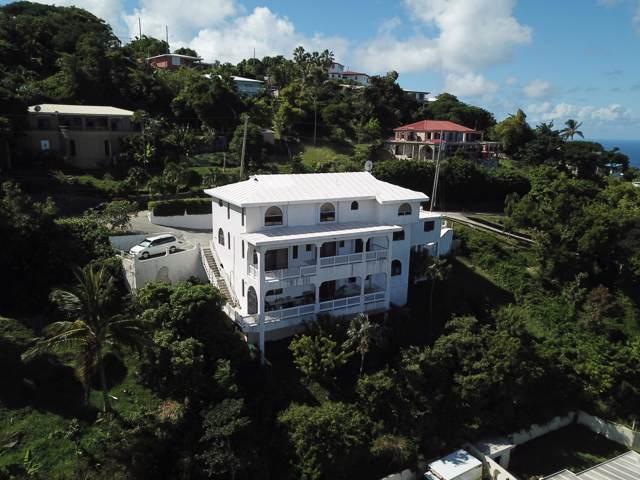 1-5 St. Joseph & Rosendahl Gns, St. Thomas, VI 00802 (MLS #19-1817) :: Hanley Team   Farchette & Hanley Real Estate