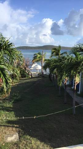 9 Cotton Valley Eb, St. Croix, VI 00820 (MLS #19-1820) :: Coldwell Banker Stout Realty