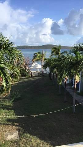 9 Cotton Valley Eb, St. Croix, VI 00820 (MLS #19-1820) :: Hanley Team | Farchette & Hanley Real Estate