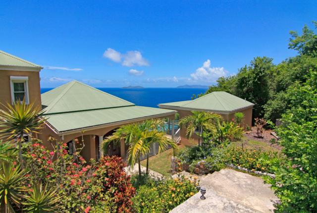 C-17-5 Lovenlund Gns, St. Thomas, VI 00802 (MLS #19-186) :: Coldwell Banker Stout Realty