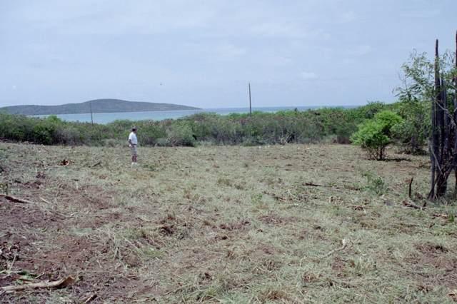 31 Solitude Eb, St. Croix, VI 00820 (MLS #19-1883) :: Hanley Team | Farchette & Hanley Real Estate