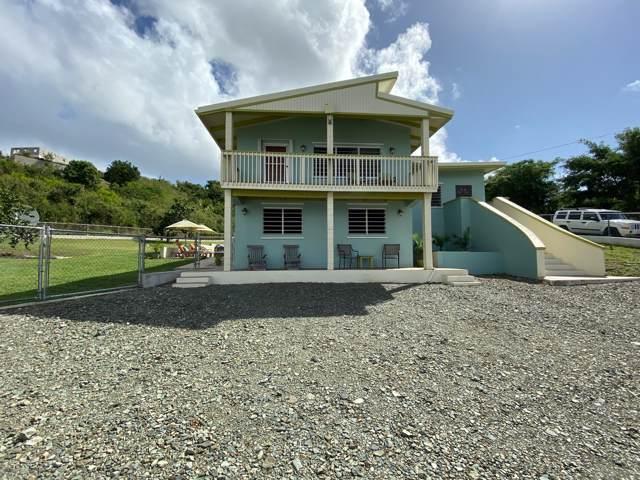 110 Mt. Pleasant Ea, St. Croix, VI 00820 (MLS #19-1901) :: Hanley Team | Farchette & Hanley Real Estate