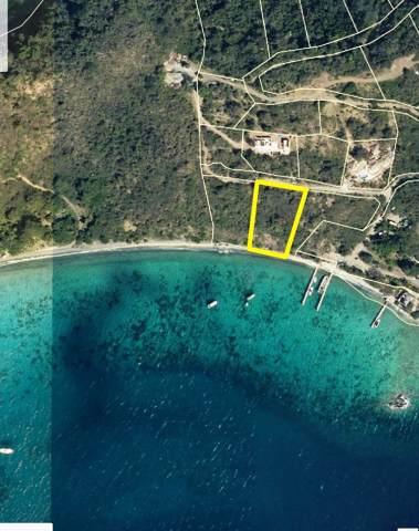 1Q Lovango, St. John, VI 00830 (MLS #19-1903) :: Hanley Team | Farchette & Hanley Real Estate
