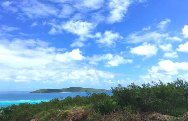 238 Cotton Valley Eb, St. Croix, VI 00820 (MLS #19-1905) :: The Boulger Team @ Calabash Real Estate
