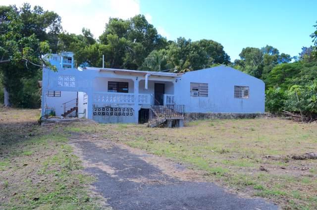 105 Ruby (Diamond) Qu, St. Croix, VI 00820 (MLS #19-1918) :: Coldwell Banker Stout Realty