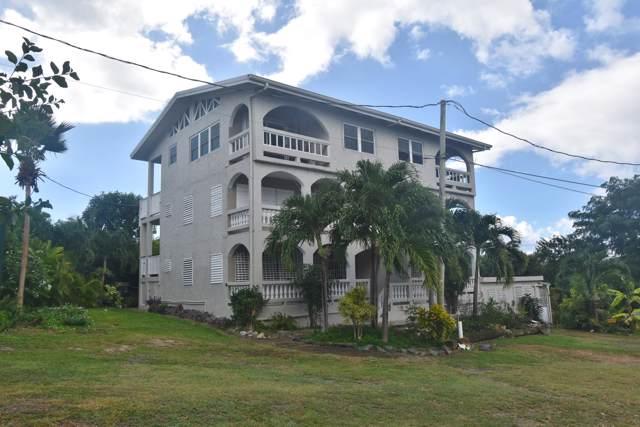99G Two Brothers We, St. Croix, VI 00840 (MLS #19-1946) :: Hanley Team | Farchette & Hanley Real Estate