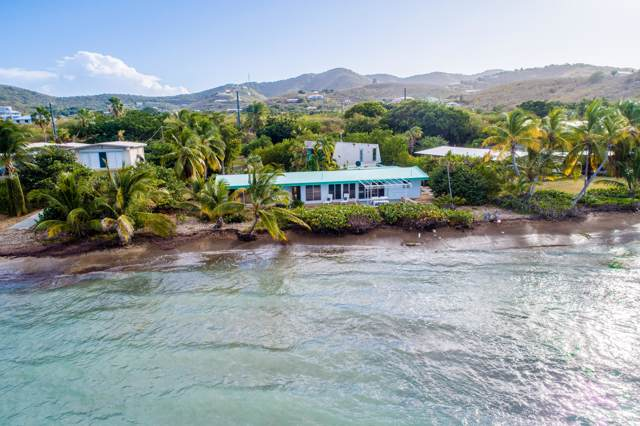 31 Cotton Valley Eb, St. Croix, VI 00820 (MLS #19-1974) :: Hanley Team | Farchette & Hanley Real Estate