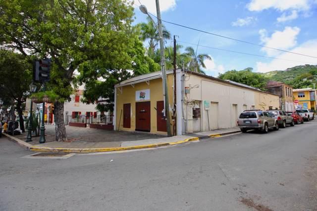 1 Kronprindsens Gade Kps, St. Thomas, VI 00802 (MLS #19-1995) :: Coldwell Banker Stout Realty